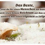 Pilze unter einer Schneedecke mit dem Disraeli Zitat: Das Beste, was du für einen Menschen tun kannst, ist nicht etwa deinen Reichtum mit ihm zu teilen, sondern ihm seinen eigenen zu zeigen. Benjamin Disraeli