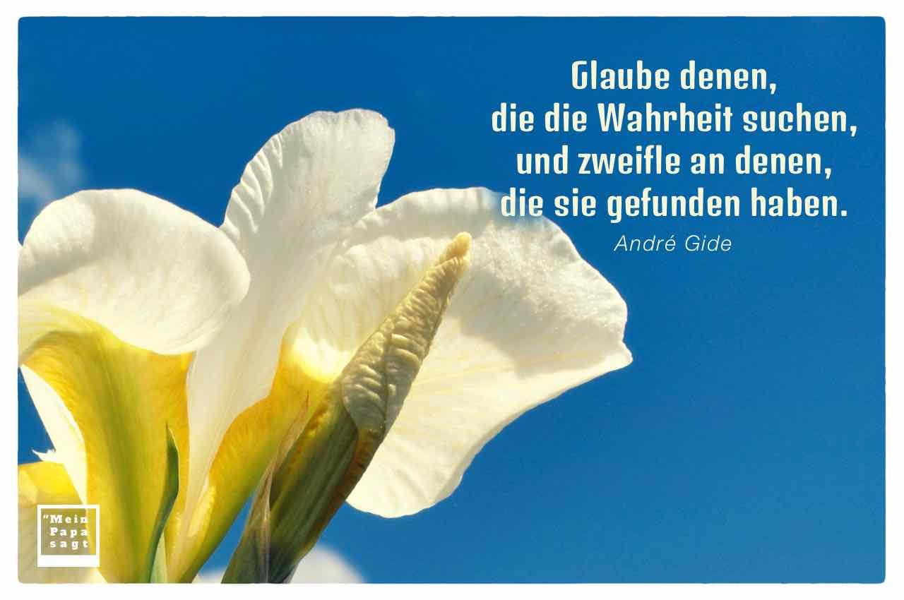 Schwertlilie mit dem Gide Zitat: Glaube denen, die die Wahrheit suchen, und zweifle an denen, die sie gefunden haben. André Gide