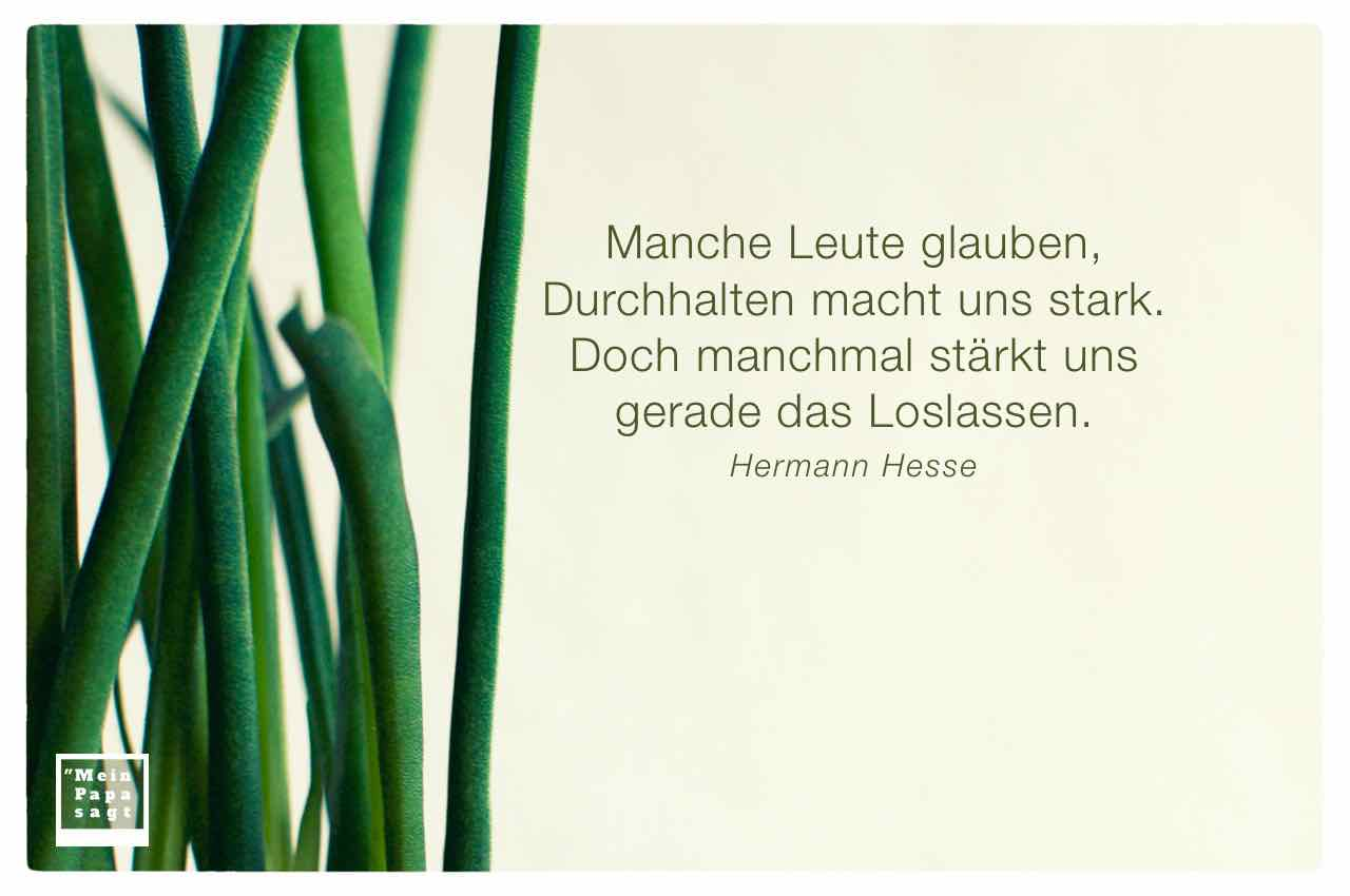 Gräser mit dem Hesse Zitat: Manche Leute glauben, Durchhalten macht uns stark. Doch manchmal stärkt uns gerade das Loslassen. Hermann Hesse