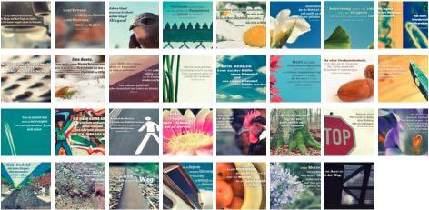 Übersichtsbild. Bilder Galerie mit Lebensweisheiten, Weisheiten, Zitate, Sprichwörter und Sprüche des Tages März 2017