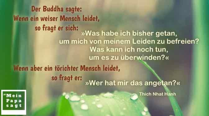 Der Buddha sagte: Wenn ein weiser Mensch leidet, so fragt er sich: »Was habe ich bisher getan, um mich von meinem Leiden zu befreien?