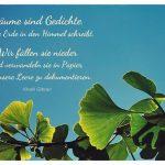 Ginkgo-Baum mit dem Gibran Zitat: Bäume sind Gedichte, die die Erde in den Himmel schreibt. Wir fällen sie nieder und verwandeln sie in Papier, um unsere Leere zu dokumentieren. Khalil Gibran