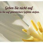 Tulpe mit dem Spezzano Zitat: Geben Sie nicht auf, bis Sie auf glücklichere Gefühle stoßen. Chuck Spezzano