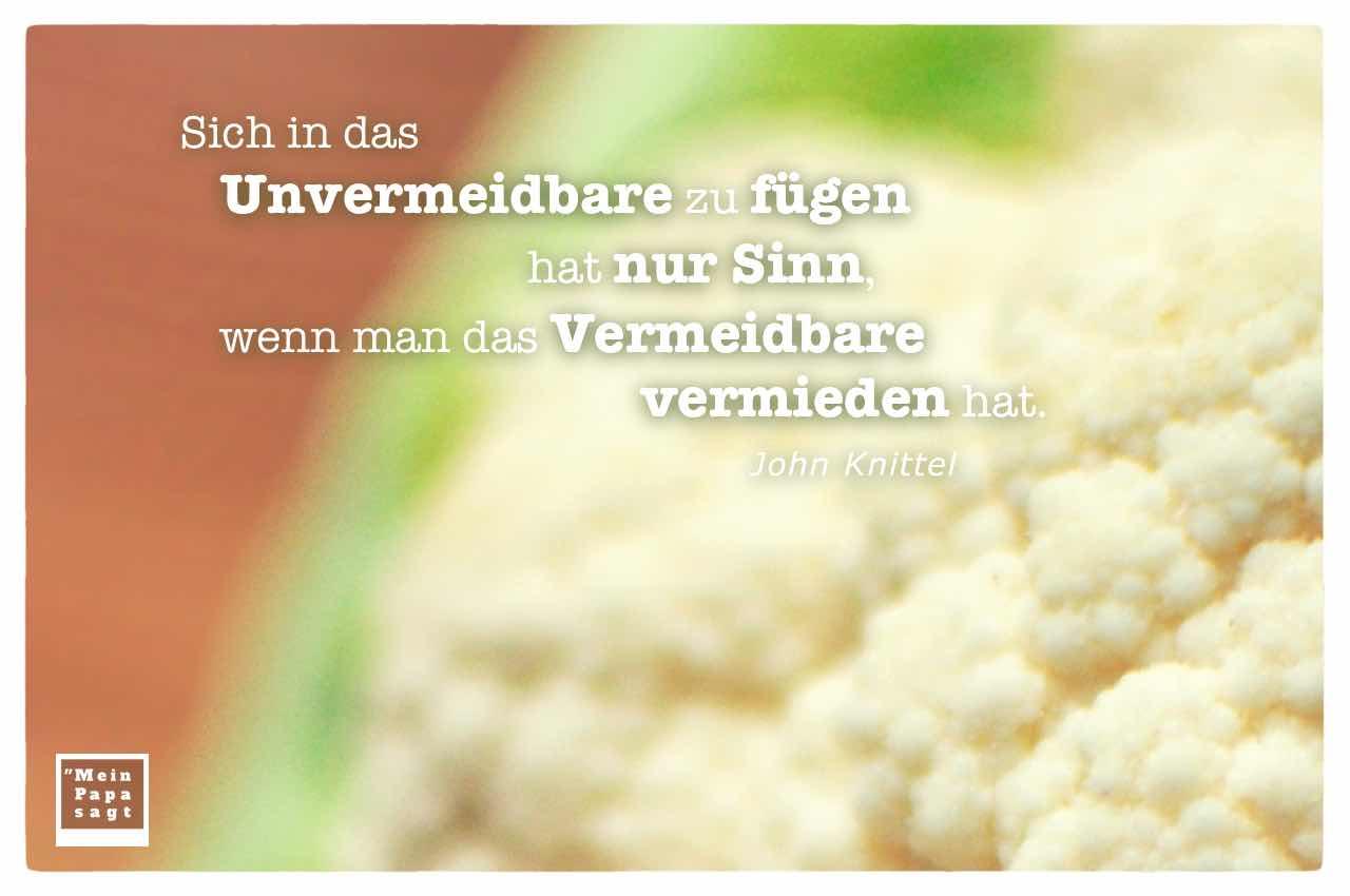Blumenkohl mit dem Knittel Zitat: Sich in das Unvermeidbare zu fügen hat nur Sinn, wenn man das Vermeidbare vermieden hat. John Knittel