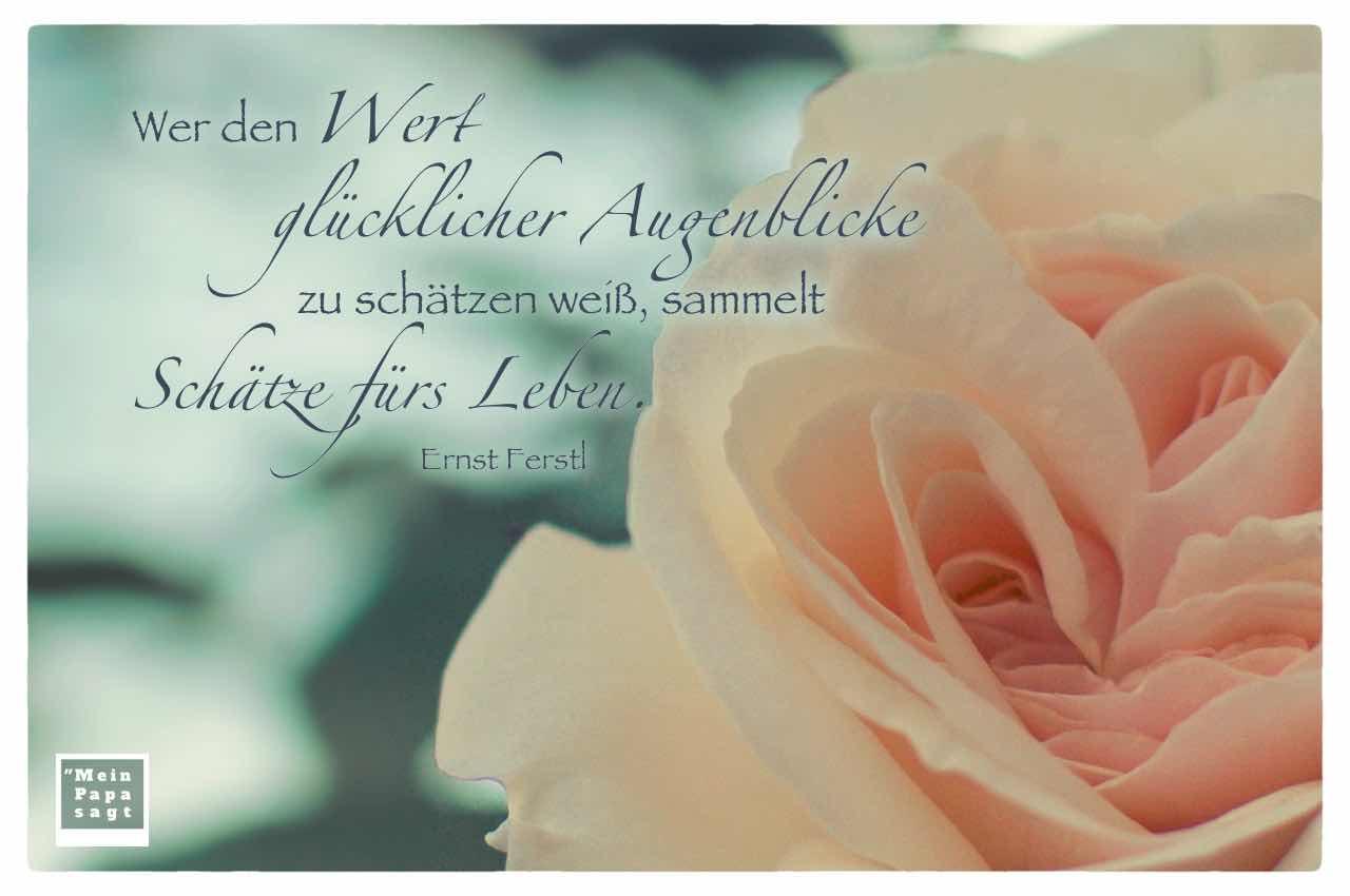 rosa Rosenblüte mit dem Ferstl Zitat: Wer den Wert glücklicher Augenblicke zu schätzen weiß, sammelt Schätze fürs Leben. Ernst Ferstl