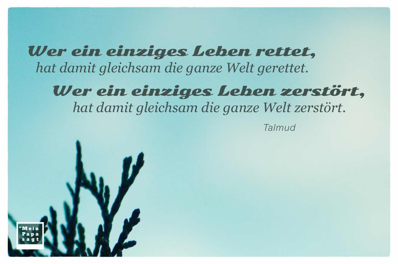 Tannenspitzen mit dem Talmud Zitat: Wer ein einziges Leben rettet, hat damit gleichsam die ganze Welt gerettet. Wer ein einziges Leben zerstört, hat damit gleichsam die ganze Welt zerstört. Talmud