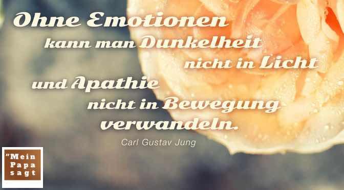 Ohne Emotionen kann man Dunkelheit nicht in Licht und Apathie nicht in Bewegung verwandeln…