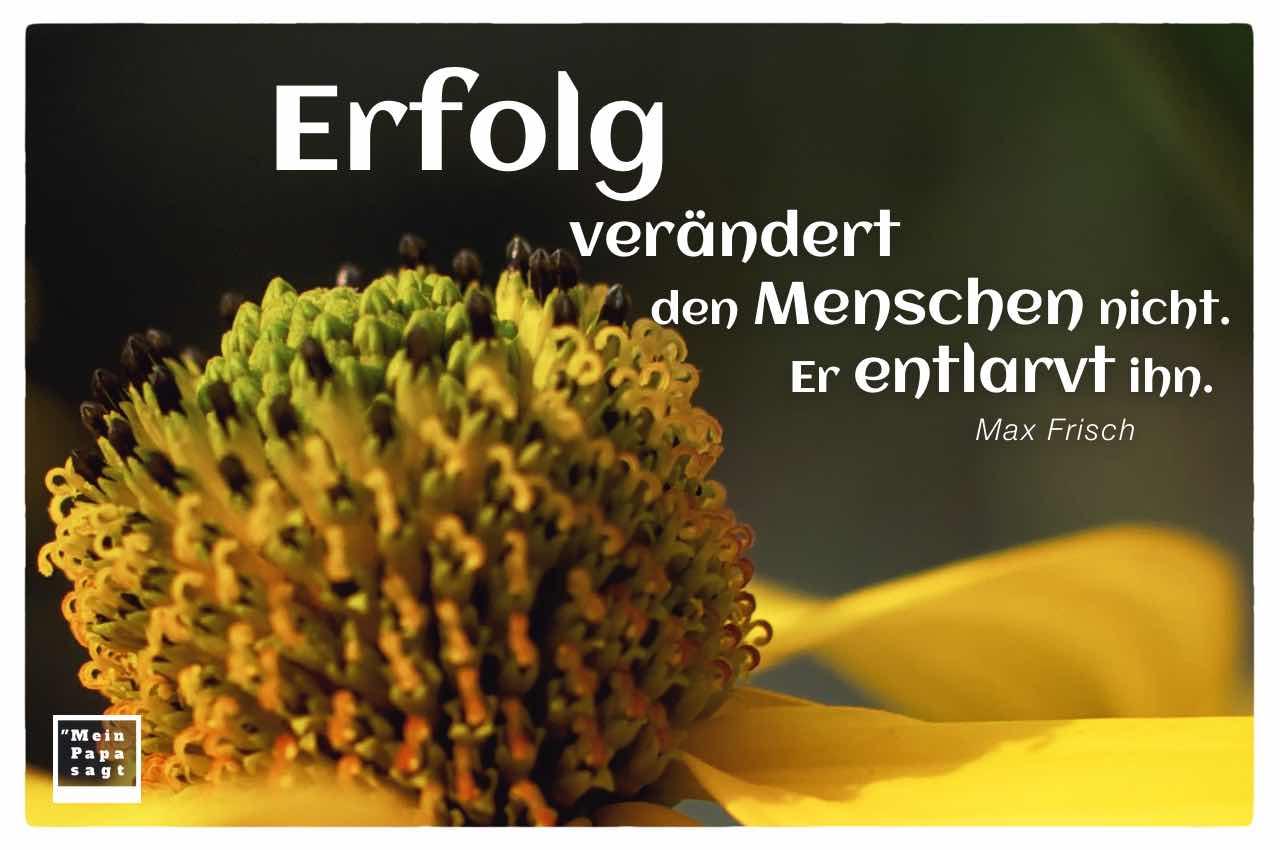 Gewöhnlicher Sonnenhut mit dem Frisch Zitat: Erfolg verändert den Menschen nicht. Er entlarvt ihn. Max Frisch