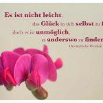 Wicken-Blüten mit der orientalischen Weisheit: Es ist nicht leicht, das Glück in sich selbst zu finden, doch es ist unmöglich, es anderswo zu finden. Orientalische Weisheit
