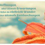 Blütenkelch mit dem Assisi Zitat: Habe Hoffnungen, aber niemals Erwartungen. Dann erlebst du vielleicht Wunder, aber niemals Enttäuschungen. Franz von Assisi
