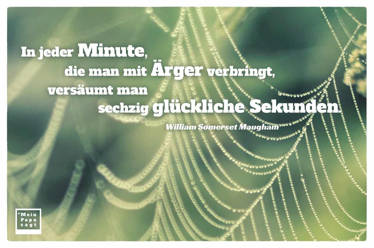 Spinnennetz mit Regentropfen Perlen und dem Somerset Maugham Zitat: In jeder Minute, die man mit Ärger verbringt, versäumt man sechzig glückliche Sekunden. William Somerset Maugham