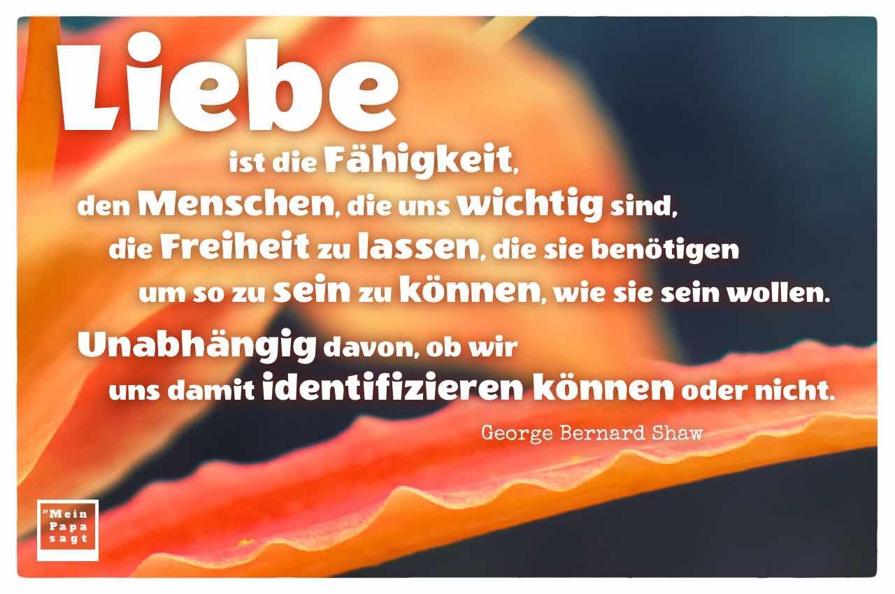 Lilie mit dem Shaw Zitat: Liebe ist die Fähigkeit, den Menschen, die uns wichtig sind, die Freiheit zu lassen, die sie benötigen um so zu sein zu können, wie sie sein wollen. Unabhängig davon, ob wir uns damit identifizieren können oder nicht. George Bernard Shaw