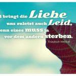 Blatt vor Himmel mit dem Hebbel Zitat: Wohl bringt die Liebe uns zuletzt auch Leid, denn eines muss ja vor dem andern sterben. Friedrich Hebbel