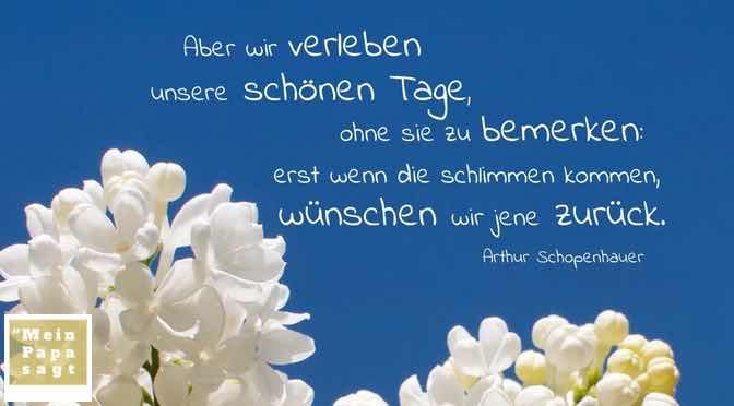 Aber wir verleben unsere schönen Tage, ohne sie zu bemerken: erst wenn die schlimmen kommen, wünschen wir jene zurück…