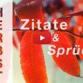 Beitragsbild - Video - Herbst - Zitate und Sprüche