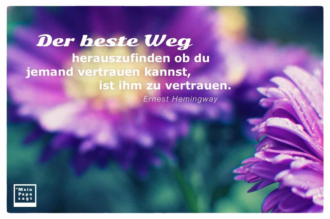 Herbst-Aster mit dem Hemingway Zitat: Der beste Weg herauszufinden ob du jemand vertrauen kannst, ist ihm zu vertrauen. Ernest Hemingway