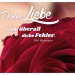 Rote Rose mit dem Bosmans Zitat: Dünne Liebe sieht überall dicke Fehler. Phil Bosmans