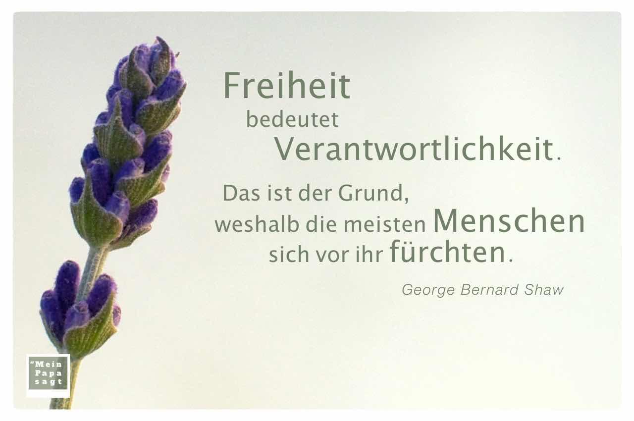 Lavendel mit dem Shaw Zitat: Freiheit bedeutet Verantwortlichkeit. Das ist der Grund, weshalb die meisten Menschen sich vor ihr fürchten. George Bernard Shaw