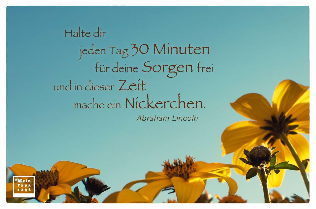 Blütenkelche mit dem Lincoln Zitat: Halte dir jeden Tag 30 Minuten für deine Sorgen frei und in dieser Zeit mache ein Nickerchen. Abraham Lincoln