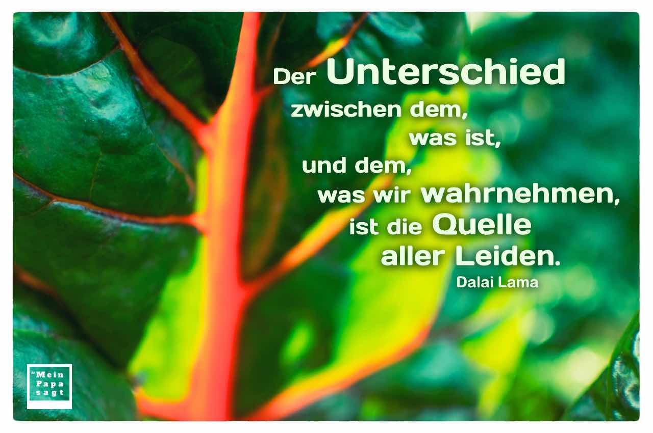 Pflanzen-Blatt mit dem Dalai Lama Zitat: Der Unterschied zwischen dem, was ist, und dem, was wir wahrnehmen, ist die Quelle aller Leiden. Dalai Lama