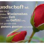 Rote Rosen mit dem Spruch: Freundschaft ist, wenn man beim ersten Wiedersehen nach langer Zeit das Gefühl hat, sich gerade erst gestern gesehen zu haben.