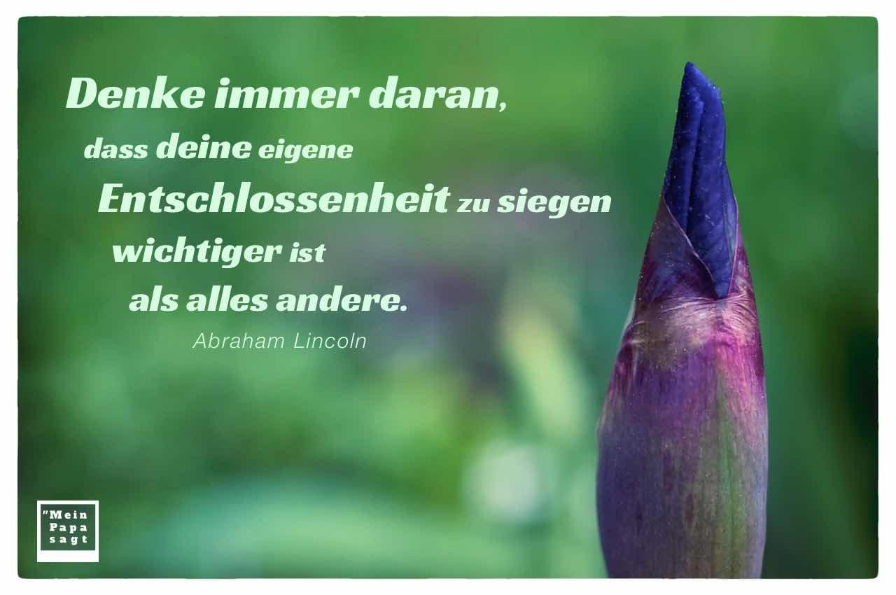 Blüten-Knospe mit dem Lincoln Zitat: Denke immer daran, dass deine eigene Entschlossenheit zu siegen wichtiger ist als alles andere. Abraham Lincoln