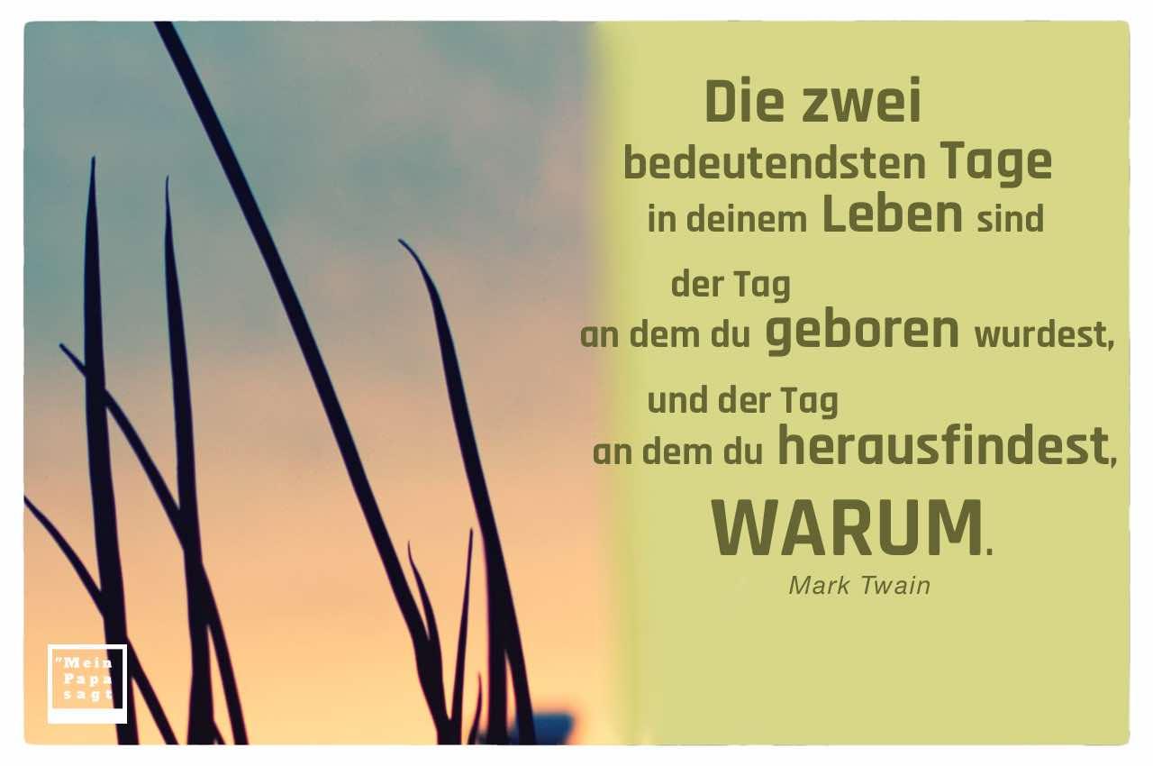 Pflanze vor Sonnenuntergang mit dem Twain Zitat: Die zwei bedeutendsten Tage in deinem Leben sind der Tag an dem du geboren wurdest, und der Tag an dem du herausfindest, WARUM. Mark Twain