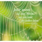 Spinnennetz mit dem Ringelnatz Zitat: Jeder spinnt auf seine Weise, der eine laut, der andere leise. Joachim Ringelnatz