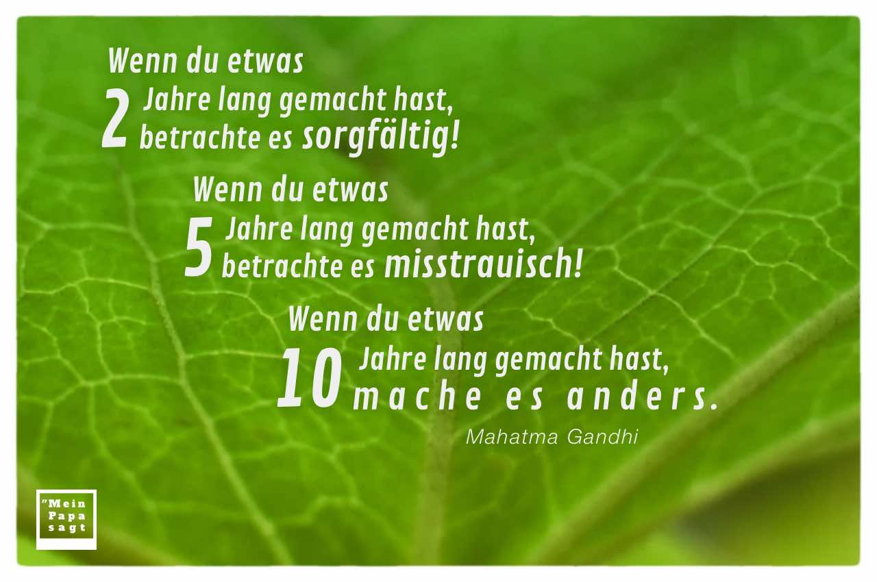 Grüner Zweig mit Blatt und dem Gandhi Zitat: Wenn du etwas 2 Jahre lang gemacht hast, betrachte es sorgfältig! Wenn du etwas 5 Jahre lang gemacht hast, betrachte es misstrauisch! Wenn du etwas 10 Jahre lang gemacht hast, mache es anders. Mahatma Gandhi