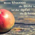 Wenn Staunen die Blüte ist, ist der Apfel die Erkenntnis