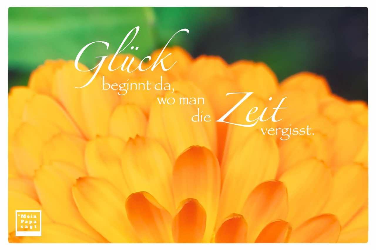 Blüte mit dem Spruch: Glück beginnt da, wo man die Zeit vergisst.