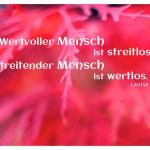 Rote Blätter mit dem Laotse Zitat: Wertvoller Mensch ist streitlos. Streitender Mensch ist wertlos. Laotse