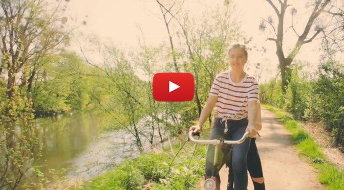 milou & flint – Schwalben Anfang Mai </br>Musik zum Wochenende