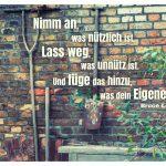 Alte Häuserwand mir Gartenwerkzeug und dem Lee Zitat: Nimm an, was nützlich ist. Lass weg, was unnütz ist. Und füge das hinzu, was dein Eigenes ist. Bruce Lee