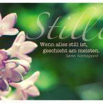 Blüten mit dem Kierkegaard Zitate-Bild: Wenn alles still ist, geschieht am meisten. Søren Kierkegaard