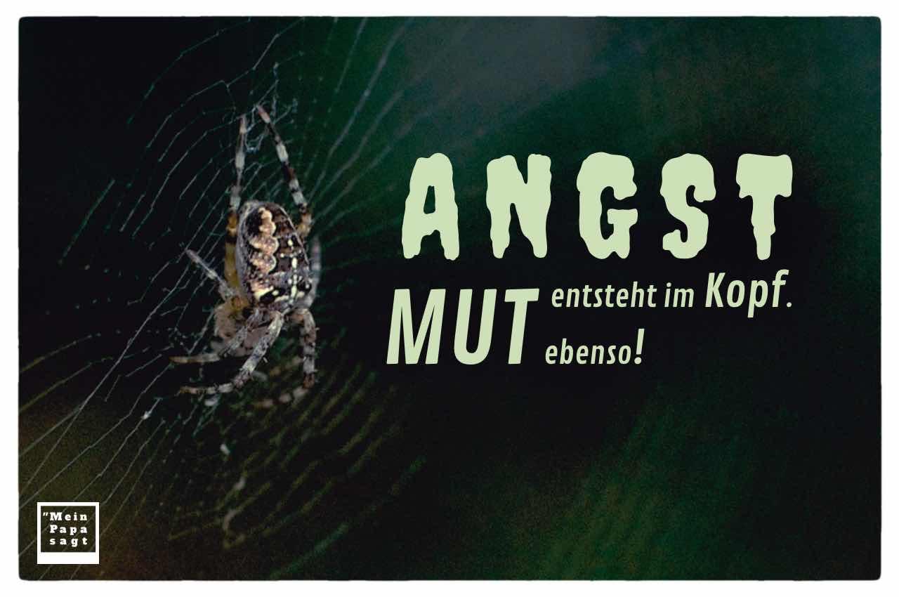 Spinne mit dem Spruch Bild: Angst entsteht im Kopf. Mut ebenso!