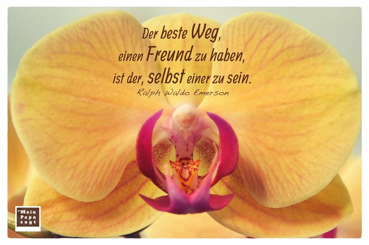Orchidee mit dem Emerson Zitate Bilder: Der beste Weg, einen Freund zu haben, ist der, selbst einer zu sein. Ralph Waldo Emerson