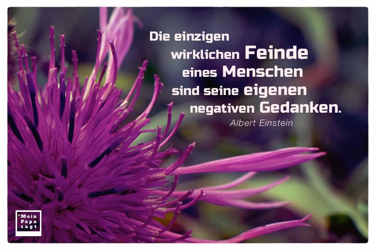 Blüte mit Einstein Zitate Bildern: Die einzigen wirklichen Feinde eines Menschen sind seine eigenen negativen Gedanken. Albert Einstein