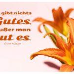 Lilien mit dem Kästner Zitate Bild: Es gibt nichts Gutes, außer man tut es. Erich Kästner
