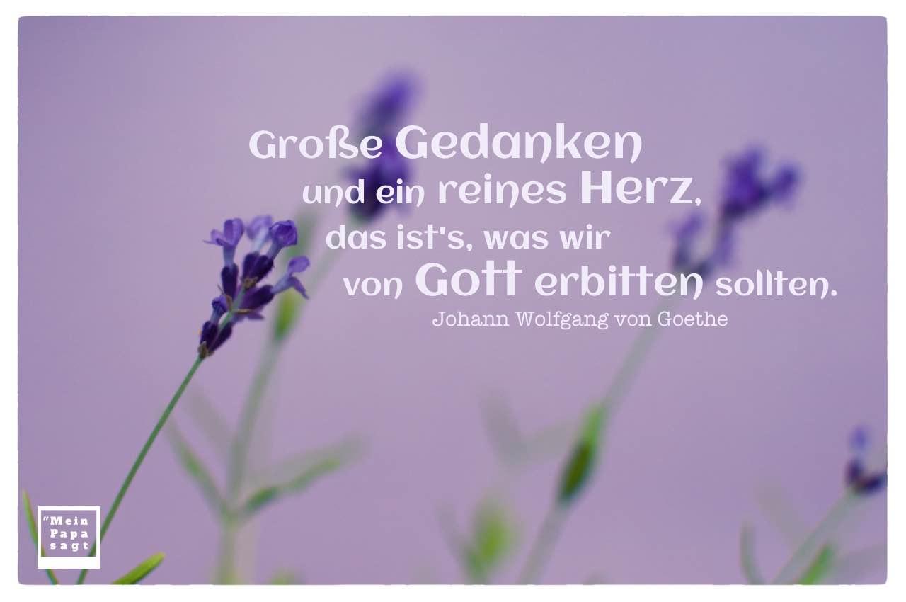 Lavendel mit dem Goethe Bilder Zitat: Große Gedanken und ein reines Herz, das ist's, was wir von Gott erbitten sollten. Johann Wolfgang von Goethe