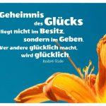 Lilie vor blauem Himmel mit Gide Zitate Bildern: Das Geheimnis des Glücks liegt nicht im Besitz, sondern im Geben. Wer andere glücklich macht, wird glücklich. André Gide