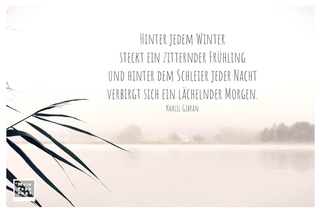 Morgen an der Havel mit Gibran Zitate Bilder: Hinter jedem Winter steckt ein zitternder Frühling und hinter dem Schleier jeder Nacht verbirgt sich ein lächelnder Morgen. Khalil Gibran