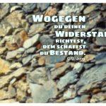 Steinmauer mit Jung Zitate Bilder: Wogegen du deinen Widerstand richtest, dem schaffst du Bestand. C.G. Jung