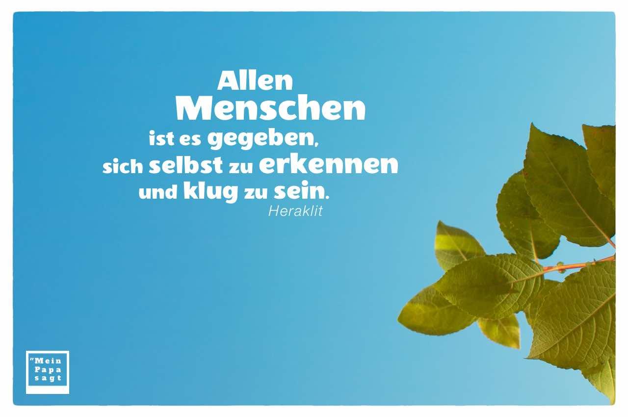 Blätter vor Himmel mit Heraklit Zitate und Bilder: Allen Menschen ist es gegeben, sich selbst zu erkennen und klug zu sein. Heraklit