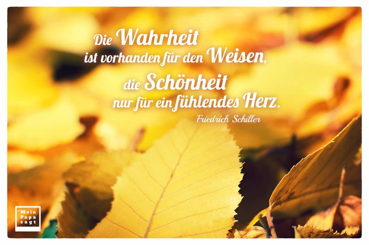 Herbstlaub mit Schiller Zitate Bildern: Die Wahrheit ist vorhanden für den Weisen, die Schönheit nur für ein fühlendes Herz. Friedrich Schiller