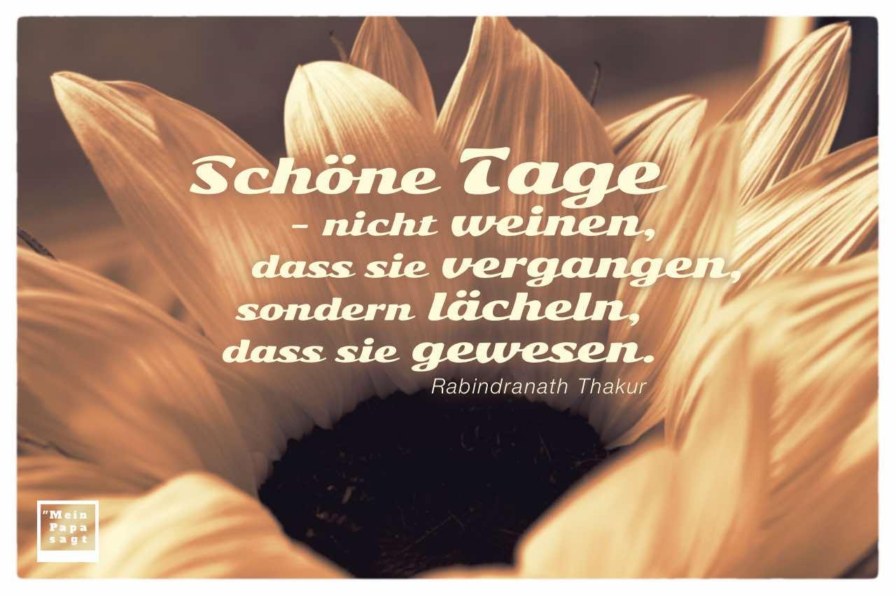Blütenkelch mit Thakur Zitate Bildern: Schöne Tage - nicht weinen, dass sie vergangen, sondern lächeln, dass sie gewesen. Rabindranath Thakur