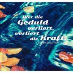 Herbstlaub auf Wasser mit Aurelius Zitate in Bildern: Wer die Geduld verliert, verliert die Kraft. Augustinus Aurelius