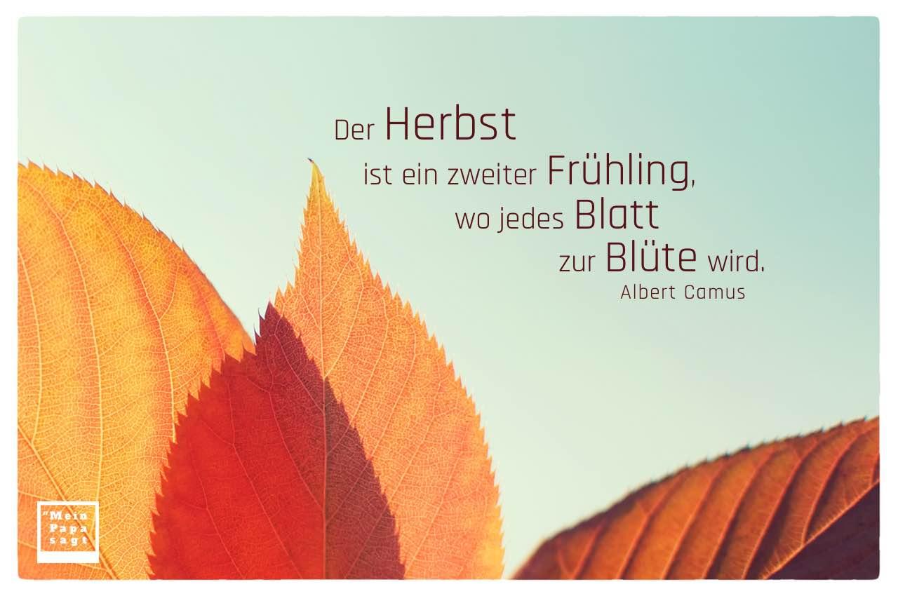 Der Herbst Ist Ein Zweiter Fruhling Wo Jedes Blatt Zur Blute Wird