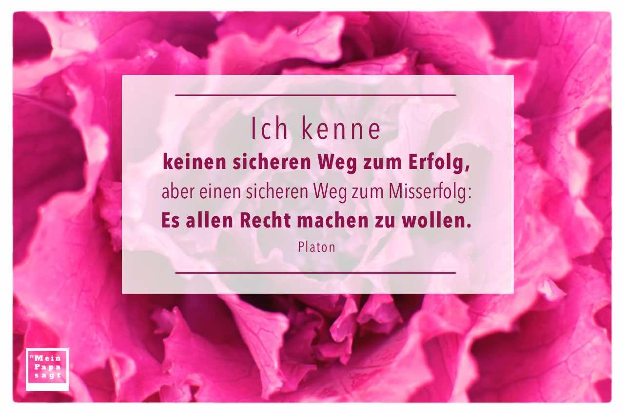 Pflanze mit Platon Zitate Bilder: Ich kenne keinen sicheren Weg zum Erfolg, aber einen sicheren Weg zum Misserfolg: Es allen Recht machen zu wollen. Platon