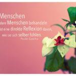 Blüte Pflanze mit Coelho Zitate Bilder: Wie Menschen andere Menschen behandeln ist eine direkte Reflexion davon, wie sie sich selber fühlen. Paulo Coelho